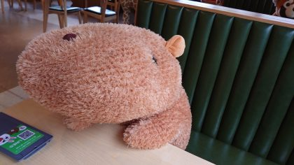 This Japanese Zoo is Using Stuffed Capybaras to Visualize Social Distancing