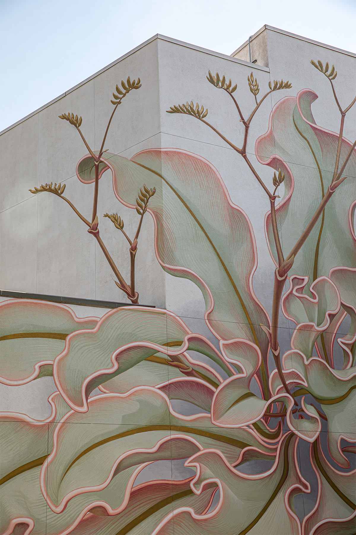 A Massive Flower Splays Across Six Surfaces in a New Mural by Artist Mona Caron