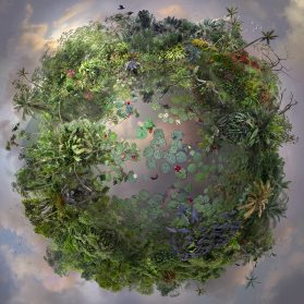 Hundreds of Collaged Photographs Form Rich, Botanical Worlds by Artist Catherine Nelson
