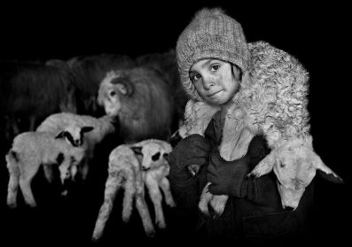 Gripping Portraits Capture the Tender Bonds Between Transylvanian Shepherds and Their Herds